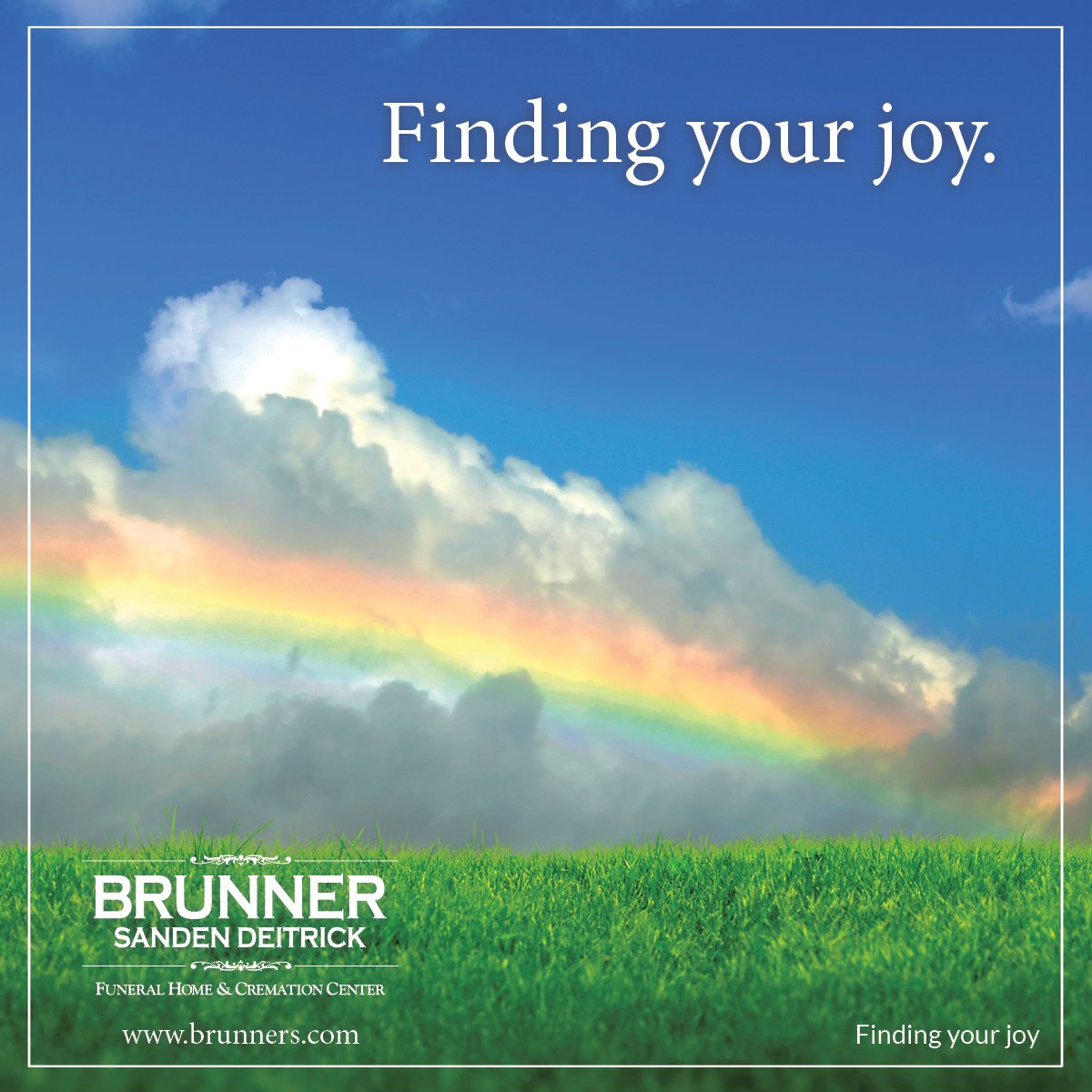 Finding your joy